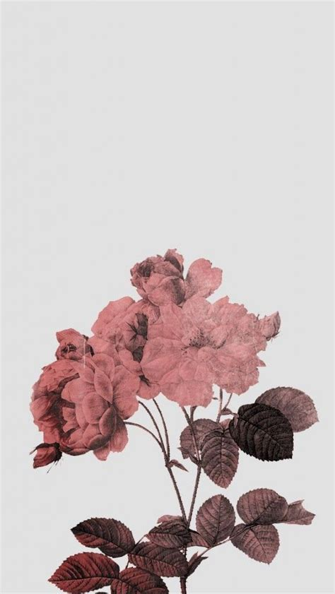 Best 25  Rose gold wallpaper ideas on Pinterest   Rose