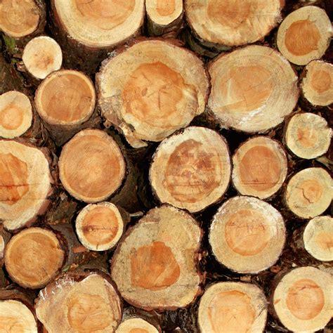 Folie Holzoptik Zum Kleben by Klebefolie Holzoptik Baumst 228 Mme Holzfolie Ebay