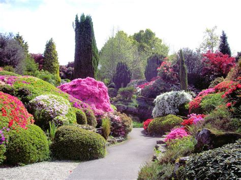 garden flower landscaping landscaping gardening ideas
