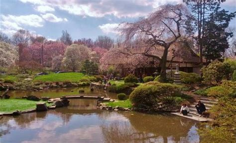 shofuso japanese house and garden shofuso japanese house and garden discoverphl com