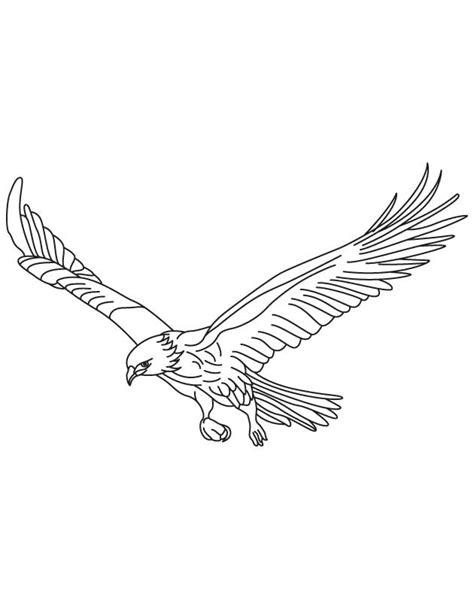 Owl Wings Coloring Page | image gallery hawk drawings in flight