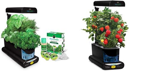 grow fresh herbs veggies year   miracle gro