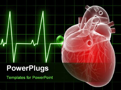 cardiovascular powerpoint template free powerpoint template background with anatomy