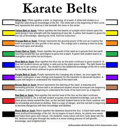 belt colors in karate karate belts meaning www pixshark images galleries