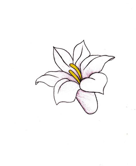 how to a small photos drawing of small flower drawing gallery