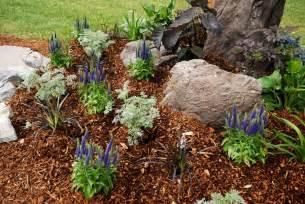 Bark Garden Ideas Grosvenor Garden Centre 187 Archive 187 Gardening Tips For June