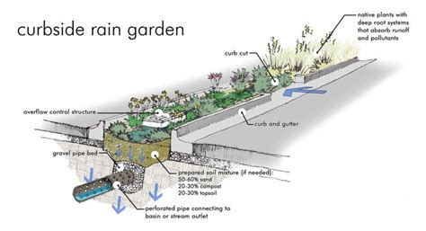 design flood meaning portland s bioswales give a new look to water management