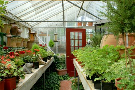 Small Greenhouses For Backyard Greenhouse A Fresh Look