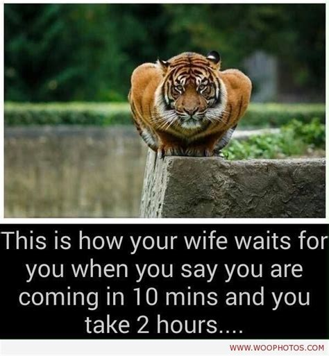 Funny Wife Memes - 184 best funny india images on pinterest funny images