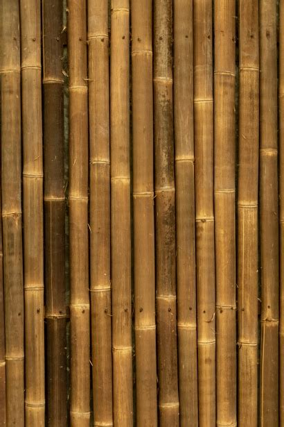 brown bamboo background  stock photo public domain