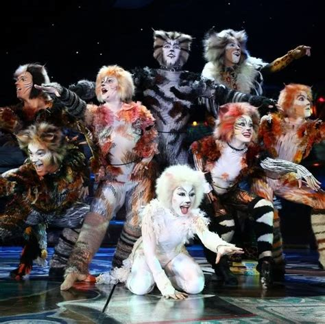 cats musical andrew lloyd webber 1000 things we