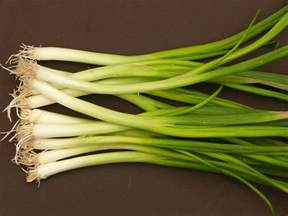 Pinterest Main Dishes - spring onions green onions and scallions harvest to table