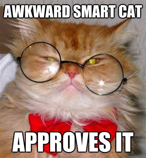 Awkward Cat Meme - awkward smart cat memes quickmeme