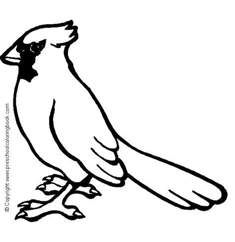 cardinal coloring pages preschool www preschoolcoloringbook com bird coloring page