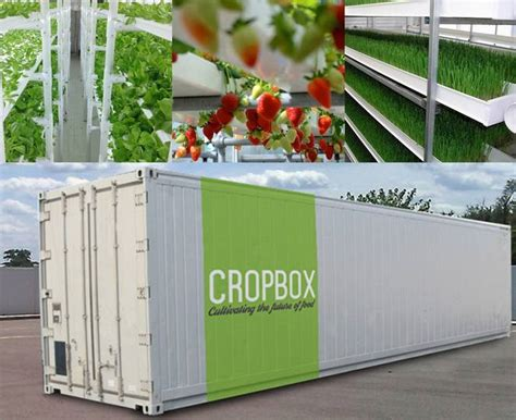 shipping container in garden farm in a box produces an acre s worth of crops in a