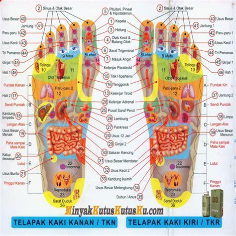Minyak Kutus Kutus Untuk Sakit Gigi testimoni minyak kutus kutus hub 0812 5227 0011