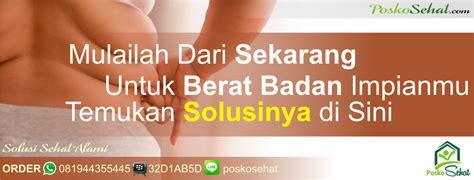 Bibit Tin Cirebon jual tanaman obat di info tanaman lengkap