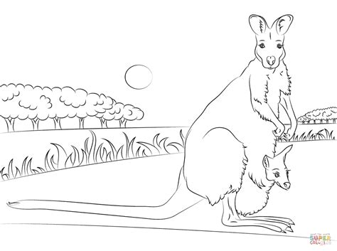 wallaby coloring page printable red necked wallaby with baby coloring page free