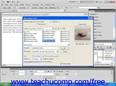 dreamweaver tutorial gallery how to create a photo gallery in dreamweaver cs5
