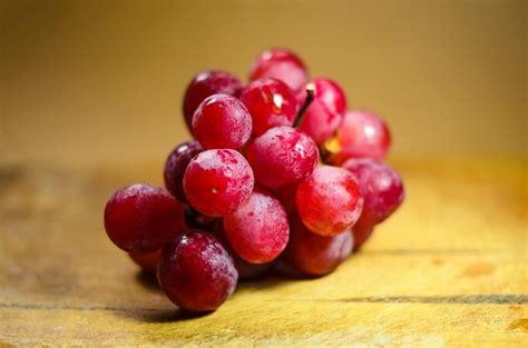 varieta di uva da tavola nuove variet 224 di uva da tavola entro il 2021