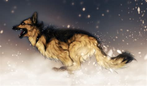 anime dogs wolves dogs anime pictures right here