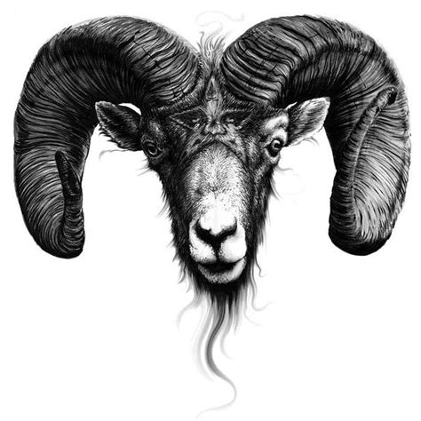 ram head tattoo 17 best images about ideas x on