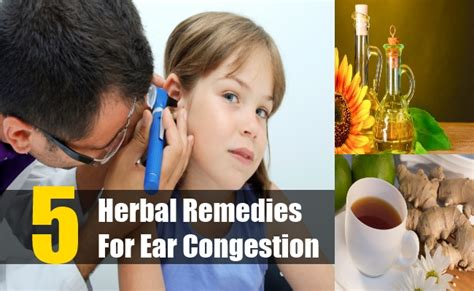 5 herbal remedies for ear congestion how to treat ear