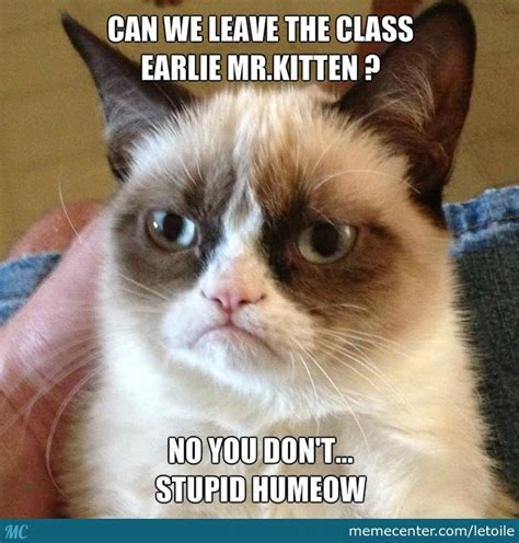 Professor Cat Meme - le cat professor by letoile meme center