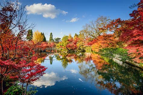 moderne trditionele tuinen naturgenuss im goldenen herbst