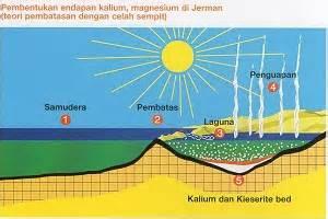 Pupuk Kalium Magnesium Sulfat jual pupuk npk distributor pupuk npk distributor pupuk