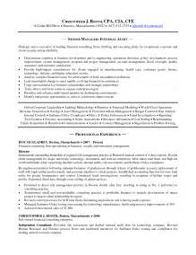 internal auditor resume objective internal auditor resume best template collection career objective examples for internal auditor 10 sales