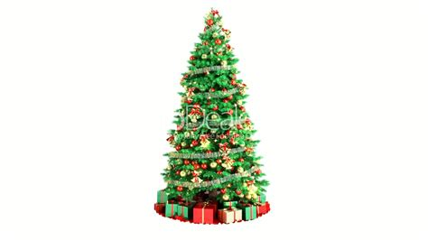 christmas tree isolated on white background loopable