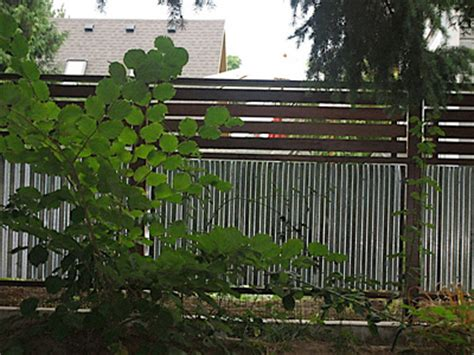 corrugated metal fence panels myideasbedroom com