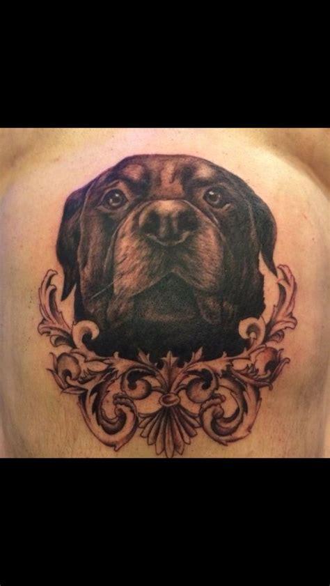 rottweiler tattoo american history x 24 best rottweiler tattoo images on pinterest
