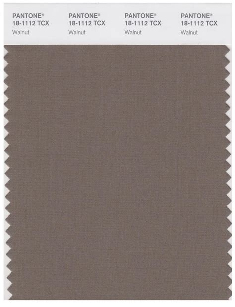 pantone smart   tcx color swatch card walnut