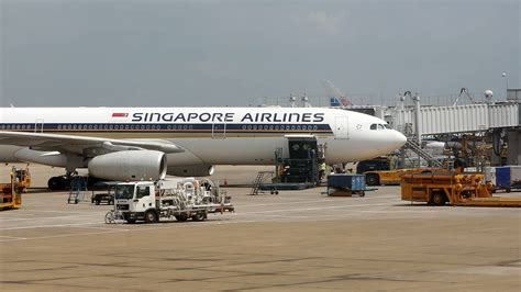 cabin crew member singapore airlines cabin crew member arrested for