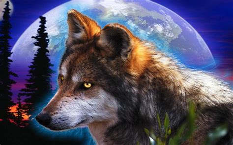 wolf wallpaper pinterest pin wolf hd wallpaper wolfs wallpapers pictures on pinterest