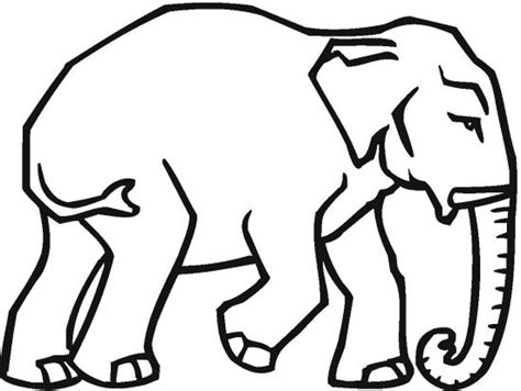 what color are elephants republican elephant coloring page color book