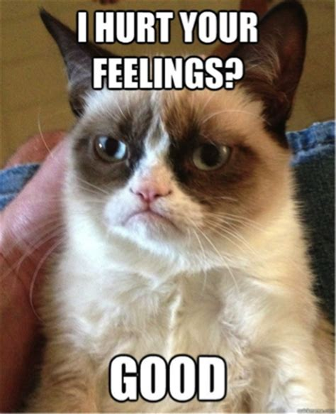 Sassy Cat Meme - if you re reading this it s not too late for you to start
