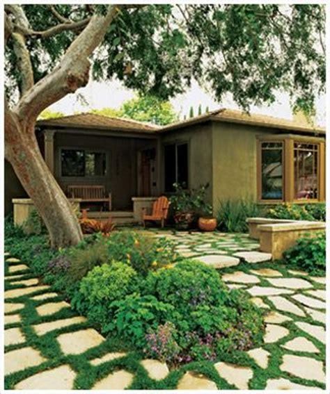 how to grow grass in backyard alternate backyard where grass won t grow shady areas etc