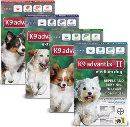 advantix 2 for dogs surrendered senior had broken when owners left pet rescue report
