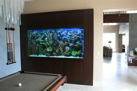 Free Standing Kitchen Islands For Sale In Wall 600 Gallon With Faux Reef Aquarium Maintenance