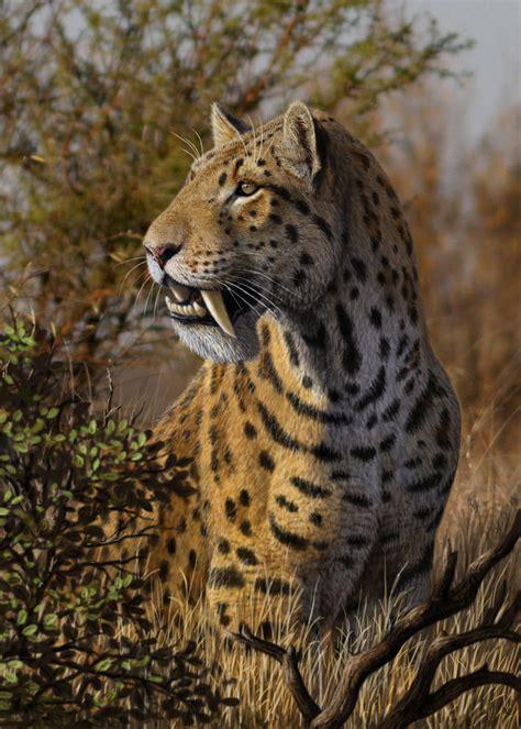 libro cats prey 2012 chasing sabretooths