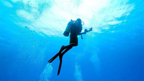 scuba diving wallpaper 59 images