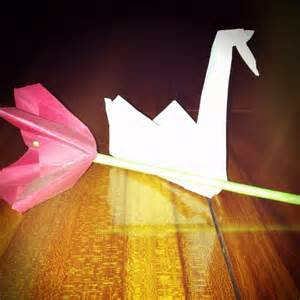 Prison Origami - origami flower and swan from prison prison