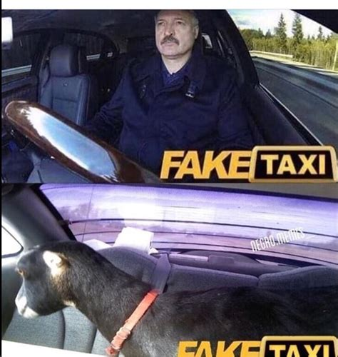 Taxi Meme - fake taxi memes taxi best of the funny meme
