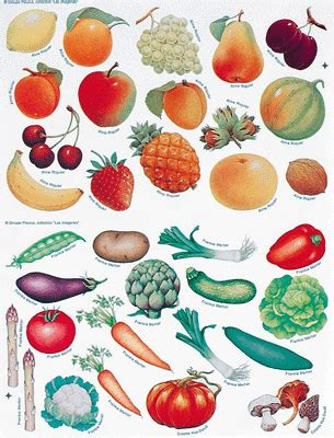 d arta vegetables gommette thematique assorti pochette de 1290 maildor