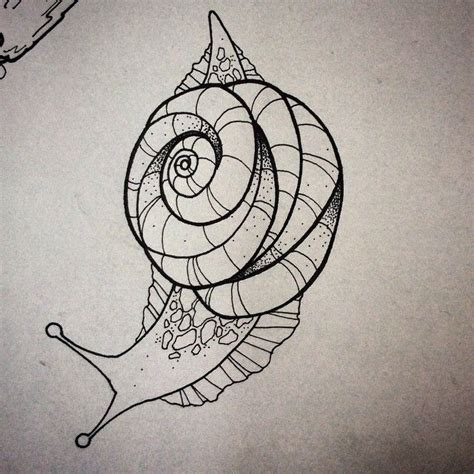snail tattoo designs 25 best ideas about snail on snail