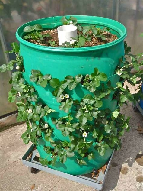 25 best ideas about strawberry planters on