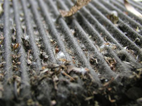 in cabin air filters need replacing ozzie